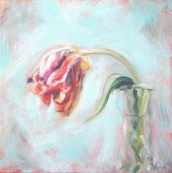 Parrot Tulip II